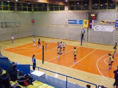 zok-vranje(6)